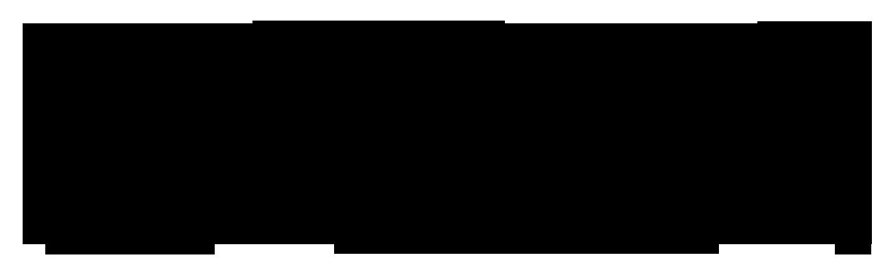 logo-bravovillas24w